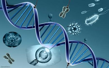 genetica y macronutrientes